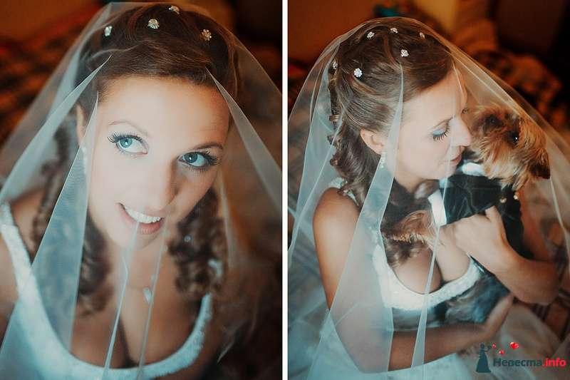 Фото 88997 в коллекции Катя и Серж! Свадебная серия! - Свадебный фотограф. Татьяна Гаранина