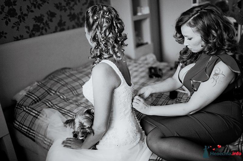 Фото 88999 в коллекции Катя и Серж! Свадебная серия! - Свадебный фотограф. Татьяна Гаранина