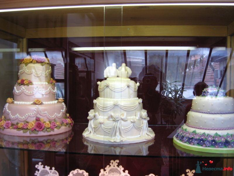 Тортики - фото 88590 Ольгица