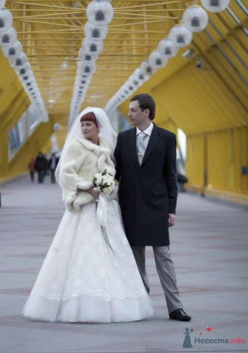 Фото 72705 в коллекции Свадебный - Анастасия Lokofoto - фотограф