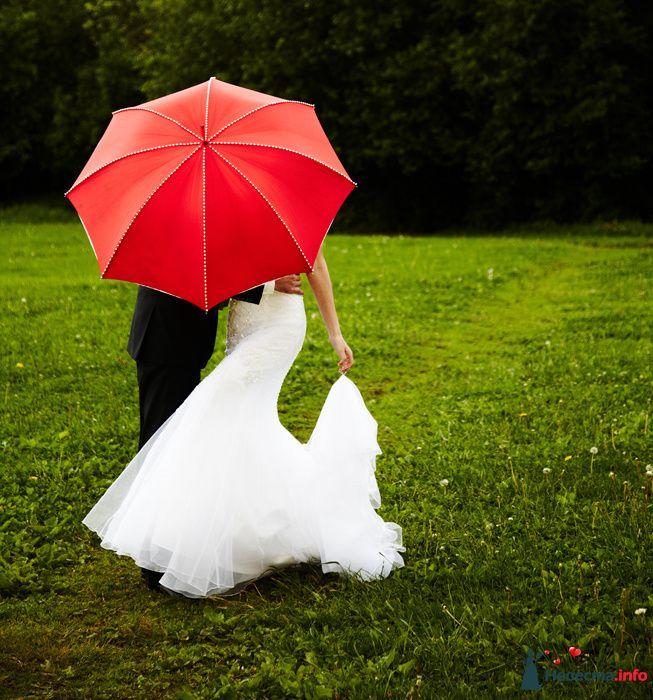 Фото 104313 в коллекции Свадебный