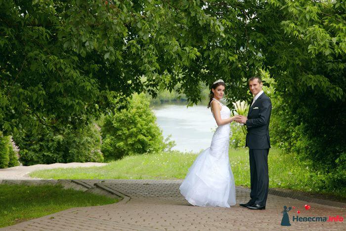 Фото 106474 в коллекции Свадебный - Анастасия Lokofoto - фотограф