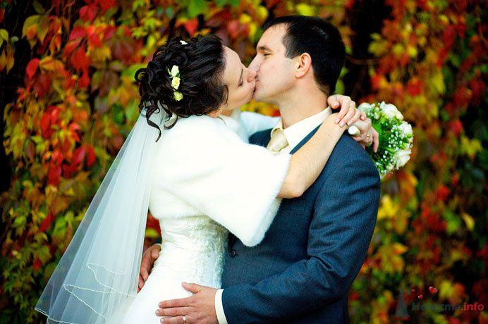 Жених и невеста целуются на фоне желтых, красных и зеленых листьев - фото 73391 Фотограф Сергей Ежов