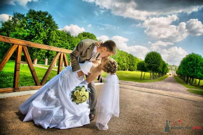 Фото 73396 в коллекции Разные свадьбы - Фотограф Сергей Ежов