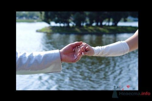Фото 4474 в коллекции Свадебные - Фотограф Сапелкин Николай