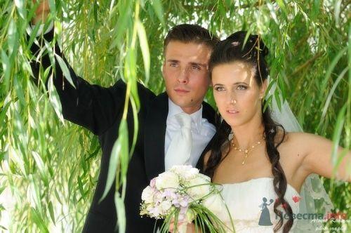 Фото 7309 в коллекции Свадебная фотография - Свадебный фотограф Альберт Хаиров