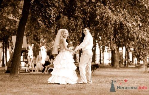 Фото 7322 в коллекции Свадебная фотография
