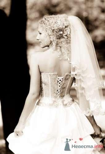 Фото 7323 в коллекции Свадебная фотография - Свадебный фотограф Альберт Хаиров