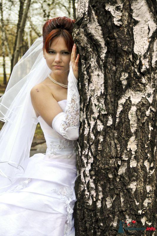 Фото 104941 в коллекции Невеста - Фотограф Любовь Холмогорова