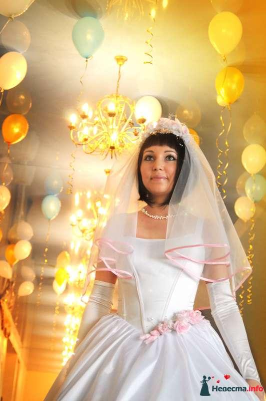 Фото 97637 в коллекции Свадебный - Фотограф Любовь Холмогорова