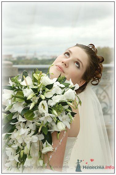 Фото 74621 в коллекции свадебные фото - Денис Соколов