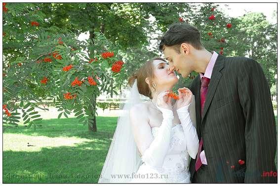 Фото 74622 в коллекции свадебные фото - Денис Соколов