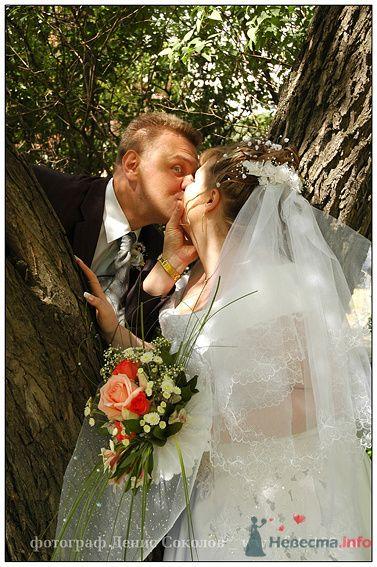 Фото 74848 в коллекции свадебные фото - Фотограф Денис Соколов