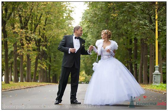 Фото 74857 в коллекции свадебные фото - Фотограф Денис Соколов