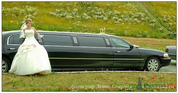Фото 74859 в коллекции свадебные фото - Фотограф Денис Соколов