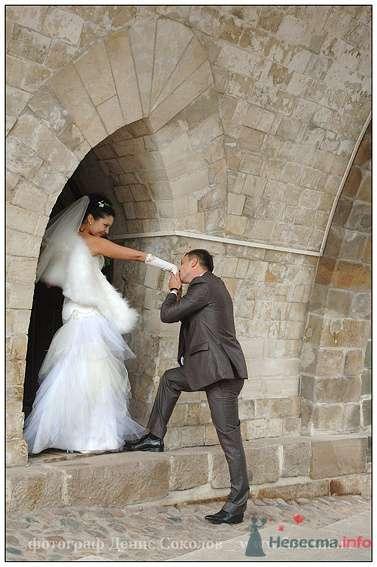 Фото 74861 в коллекции свадебные фото - Фотограф Денис Соколов