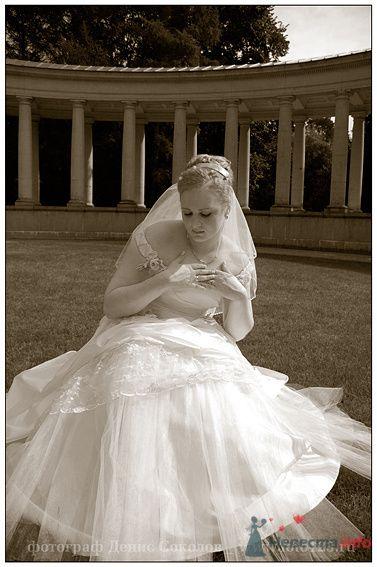Фото 74865 в коллекции свадебные фото - Фотограф Денис Соколов