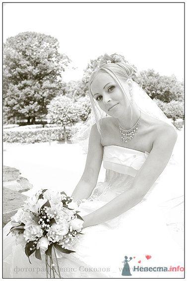 Фото 74880 в коллекции свадебные фото - Фотограф Денис Соколов