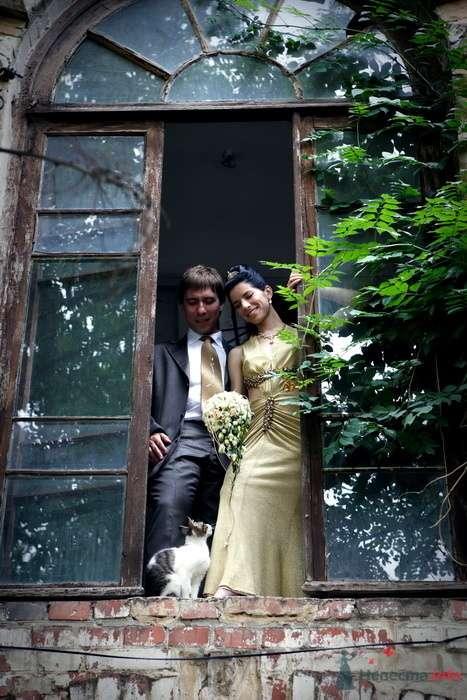 Фото 75450 в коллекции СВАДЬБА  ВИТАЛИЙ и ЕВГЕНИЯ - Невеста01
