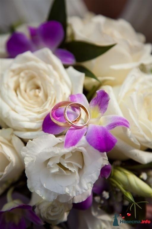 Фото 99950 в коллекции Свадьба - Тигрёна