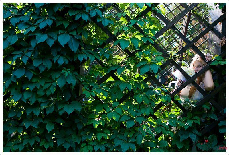 Фото 76170 в коллекции Мои фотографии - Фотографы Никифоровы-Гордеевы Сергей и Константин