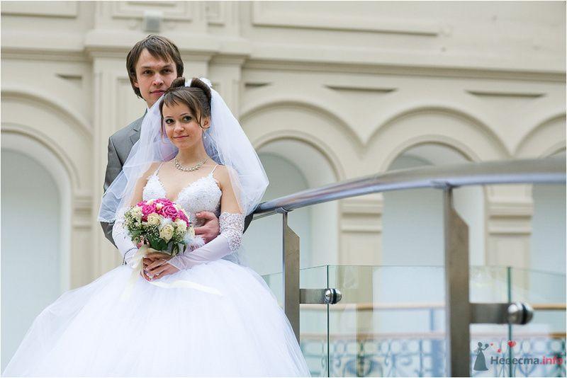 Фото 77661 в коллекции Ваня и Таня - Фотографы Никифоровы-Гордеевы Сергей и Константин