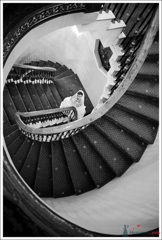 Фото 79342 в коллекции Мои фотографии - Фотографы Никифоровы-Гордеевы Сергей и Константин