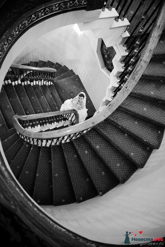 Фото 100107 в коллекции MIX - Дуэт фотогрфов Никифоров Костя и Гордеев Сергей
