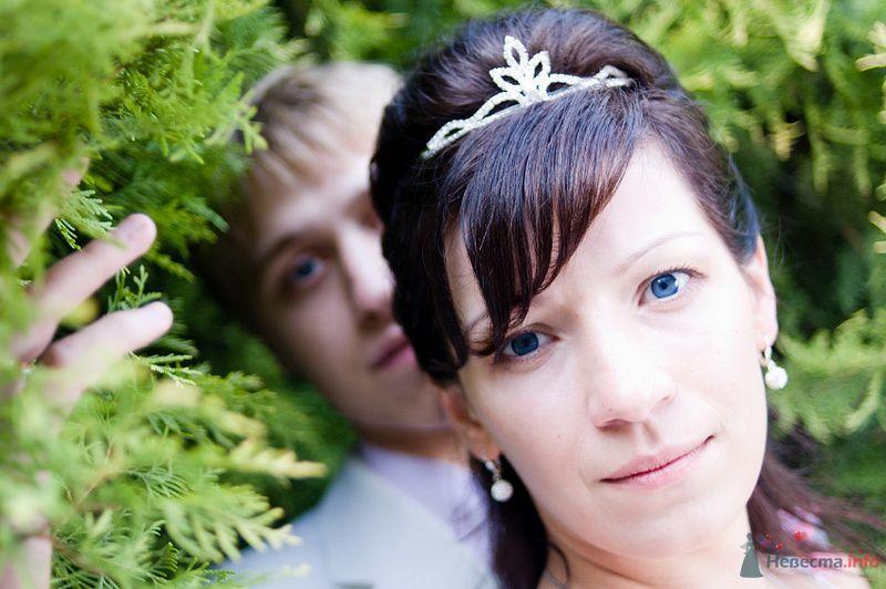 Фото 76005 в коллекции Свадьба - Александр Вишняков - свадебный фотограф