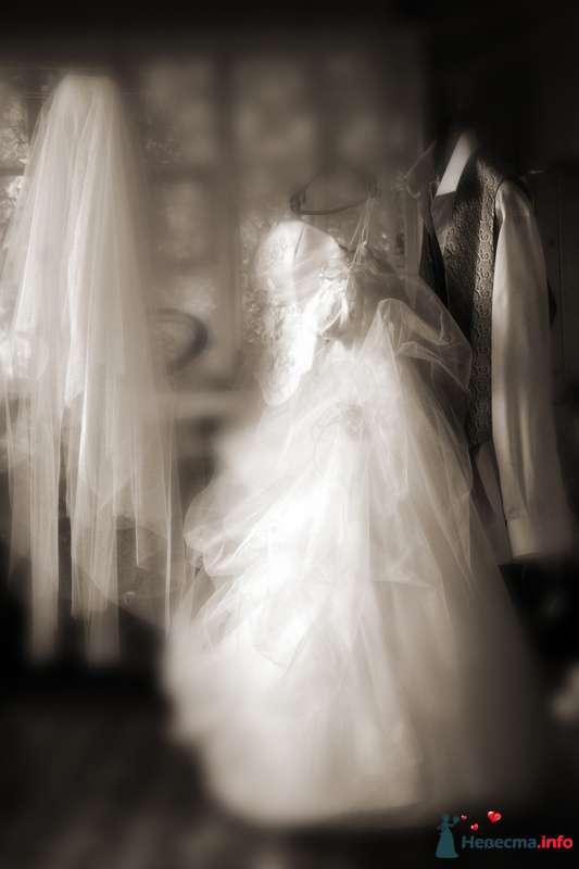 Фото 115716 в коллекции Моя свадьба - Стилист Скачкова Света