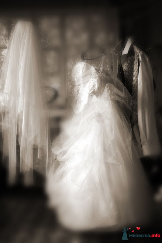 Фото 115716 в коллекции Моя свадьба