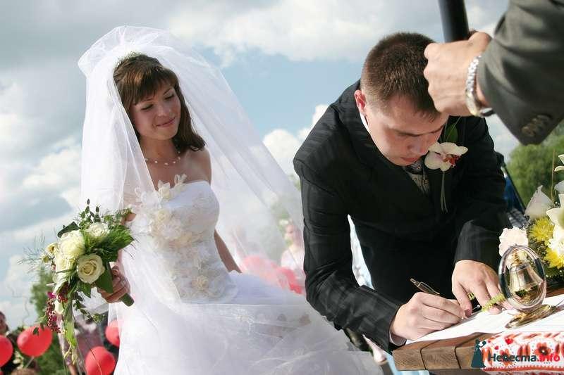 Фото 115732 в коллекции Моя свадьба - Стилист Скачкова Света