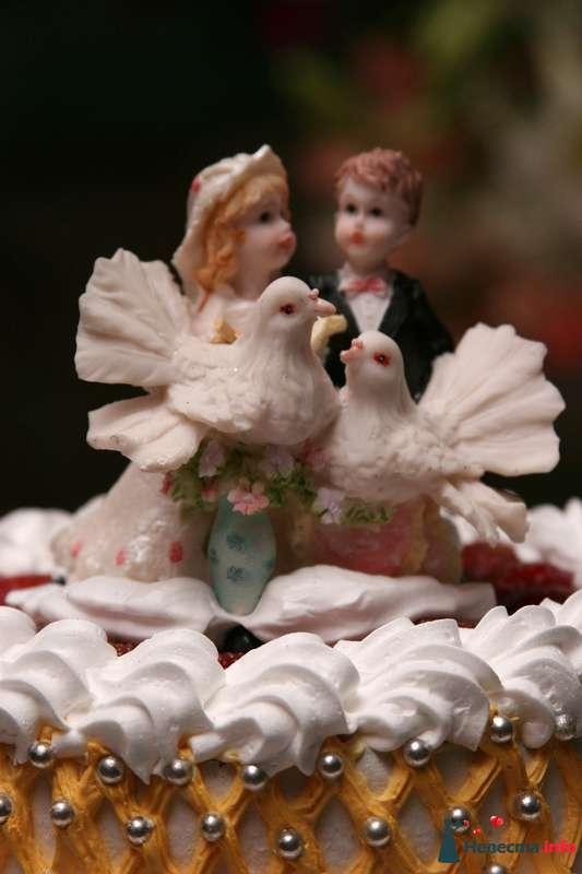 Фото 115775 в коллекции Моя свадьба - Стилист Скачкова Света