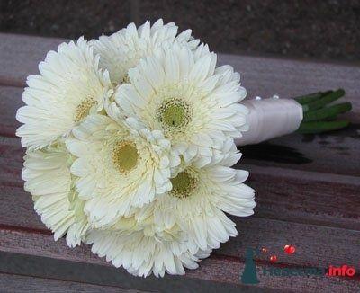 Фото 92407 в коллекции фото для форумов - Студия Finnart - праздничная флористика и декор