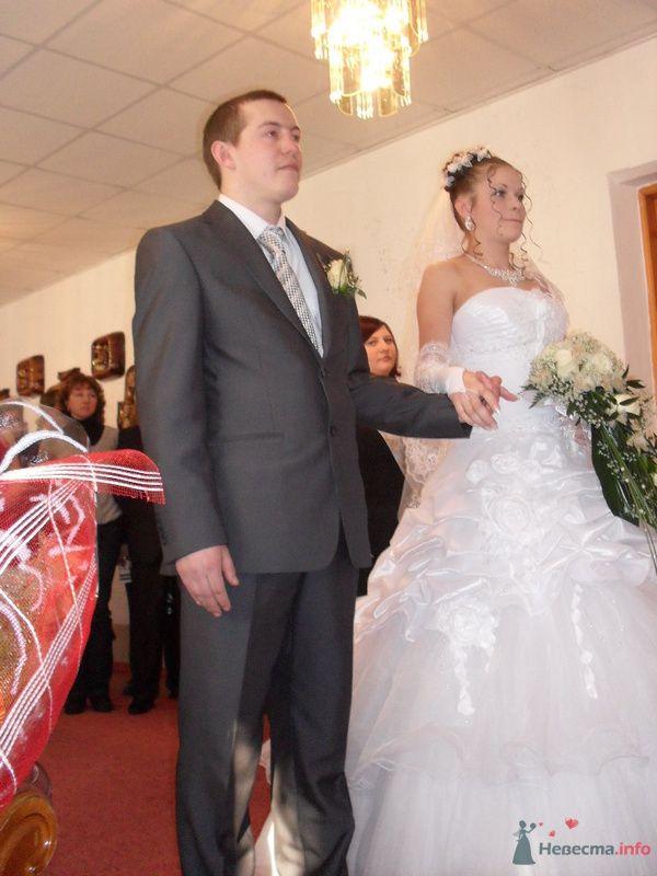 Фото 77866 в коллекции Моя свадьба. - dobirmanik