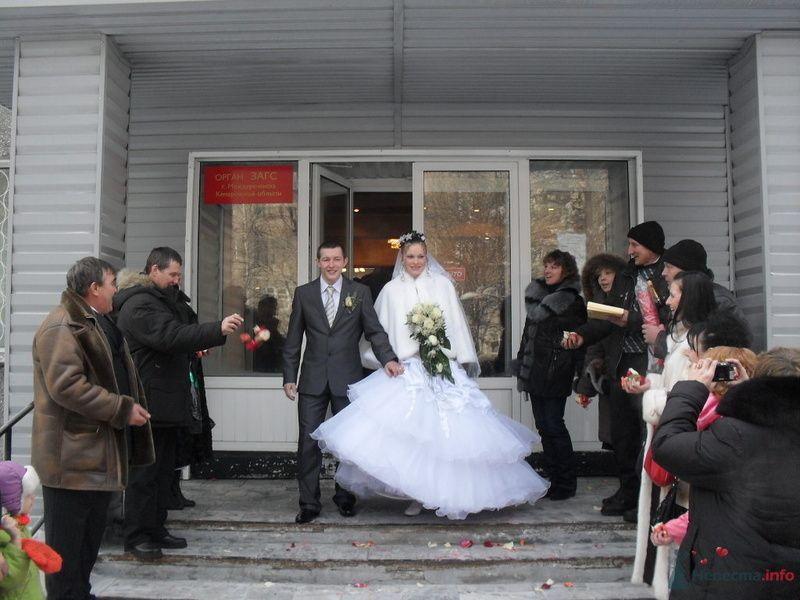Фото 77868 в коллекции Моя свадьба. - dobirmanik