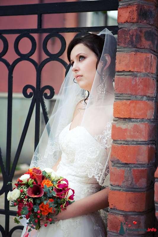 Фото 124194 в коллекции Мои фотографии - Невеста01