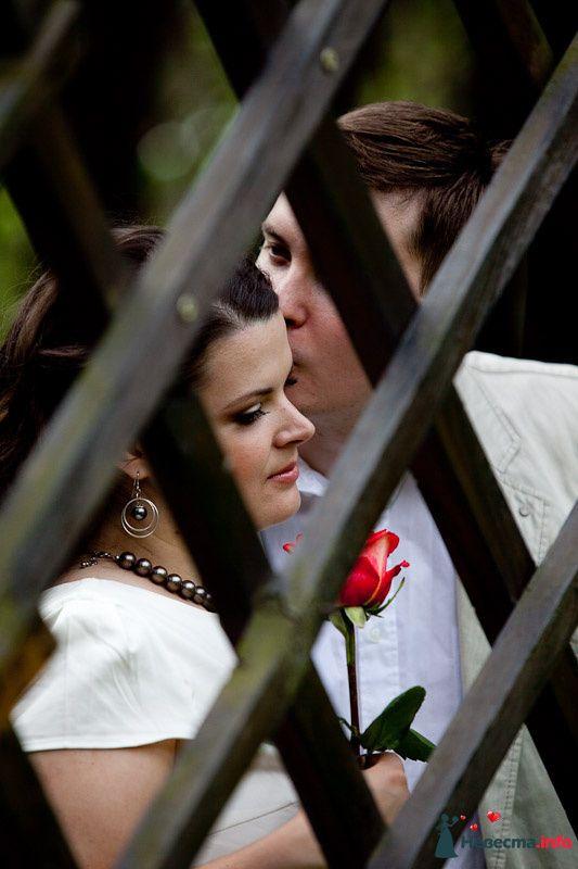 Фото 98930 в коллекции Love Story - Oliti
