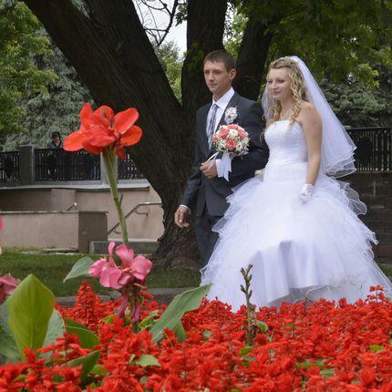 Фото сессия свадьбы