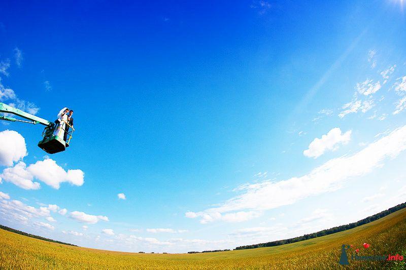 Фото 94791 в коллекции Мгновения счастья - Light Photo Studio - фотограф