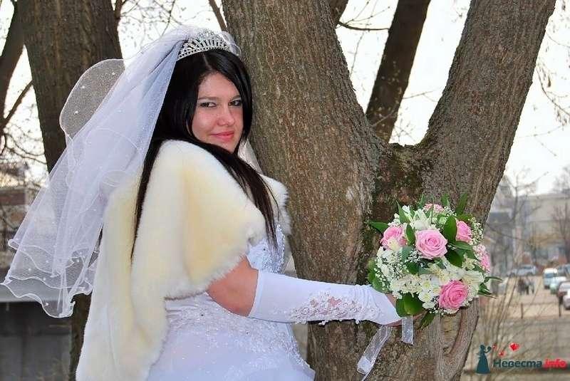 Фото 93773 в коллекции Свадьба - НадиН17