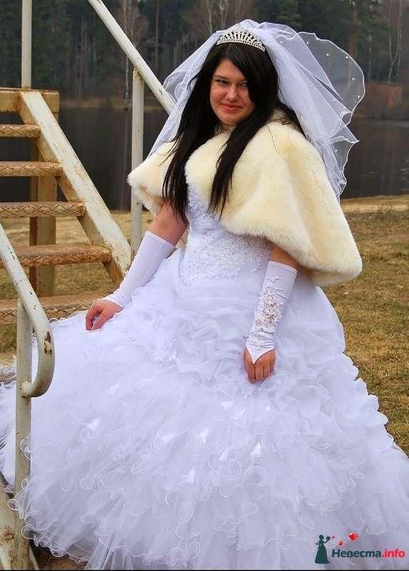 Фото 93779 в коллекции Свадьба - НадиН17