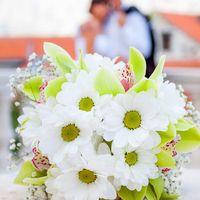 Букеты невесты из белых ромашек и зеленых орхидей
