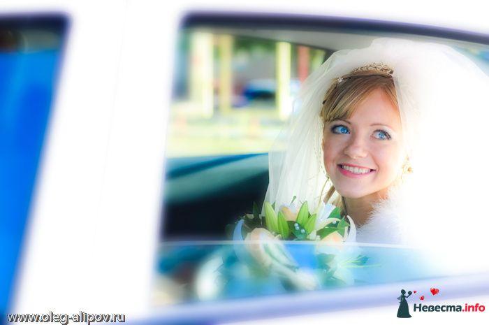 Фото 80818 в коллекции Свадьба Белгород - immortal