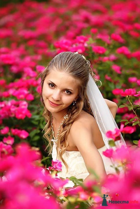 Фото 81292 в коллекции Свадебный день - Фотограф Сергей Таран