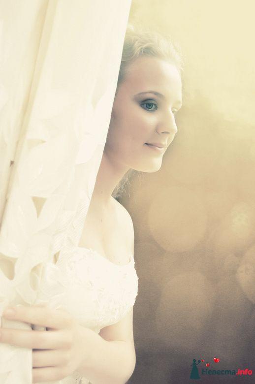 Фото 92998 в коллекции Мои фотографии - Фотограф Юлия Самохина