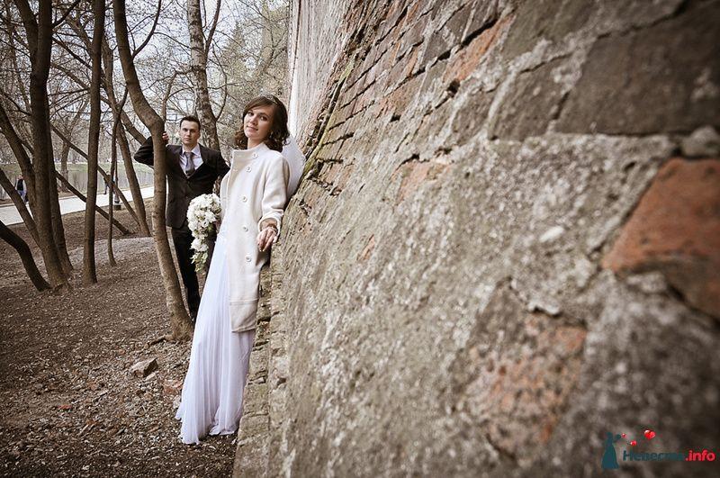 Фото 93052 в коллекции Прогулка.  - Фотограф Юлия Самохина