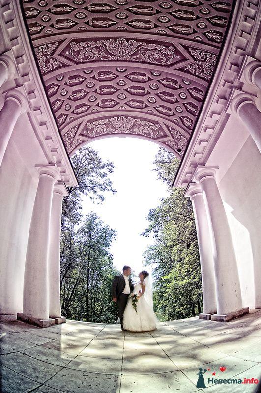 Фото 127318 в коллекции Ксения и Антон (продолжение) - Фотограф Юлия Самохина