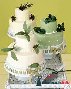 Фото 84777 в коллекции Торты - Свадебный распорядитель. Яна