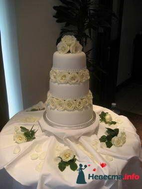 Фото 84812 в коллекции Торты - Свадебный распорядитель. Яна